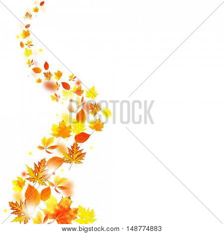 Autumn falling leaves isolated on white