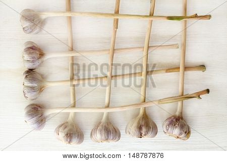 lay flat eight heads of garlic stacked on a light wooden background in a grid top view / the favorite spice of the peoples of the world