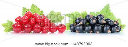 Red And Black Currant Currants Berries Fruits