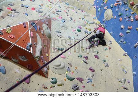 Rock climbing. Young girl with equipment rises on specially-equipped wall for climbing, view from below
