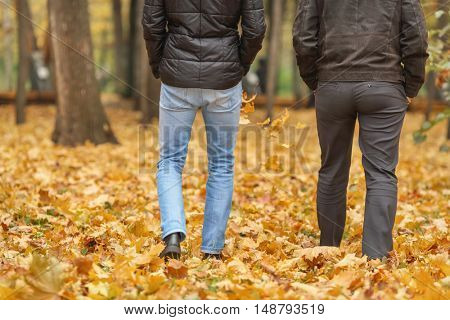 Detail of two friend in black jackets walk in autumn woods, back view