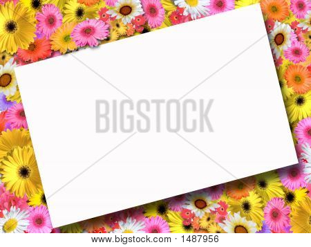 Floral Frame With Tilted Overlay