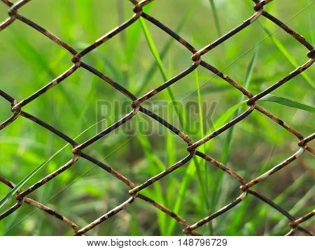 rusty metal chain wire fence with grasses in the background