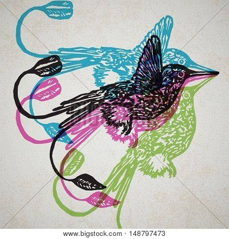 Linocut tropical Hummingbird birds on background. Vector Illustrated Hummingbirds.