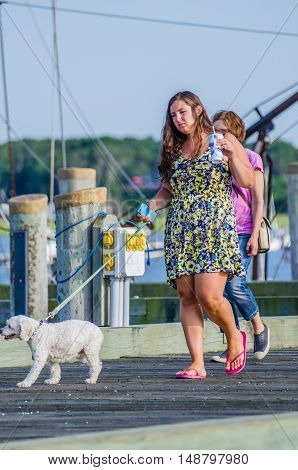 Wellfleet, USA - July 30, 2014: Young woman walking poodle dog on boardwalk dock pier in Cape Cod with phone and drink