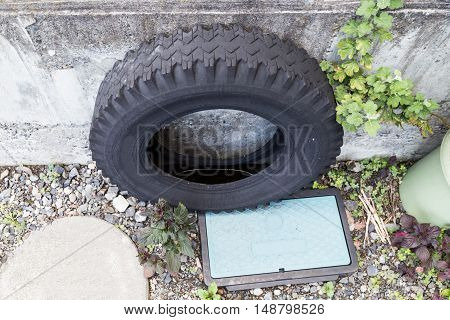 Used Tires Traps Rain Water Risk Breeding Ground For Mosquito