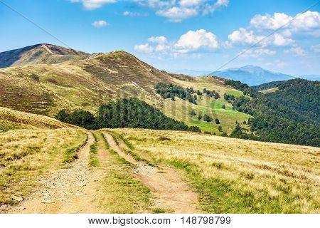 Road Through A Meadow On Hillside