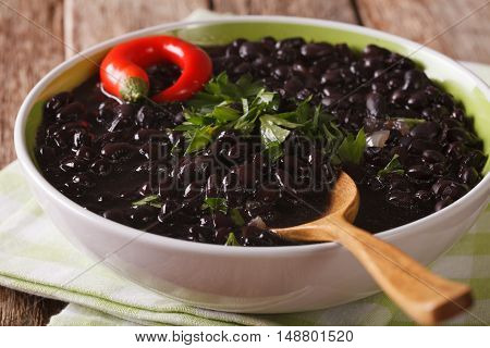 Thick Soup Of Black Bean With Chilli Peppers Close Up In A Bowl. Horizontal