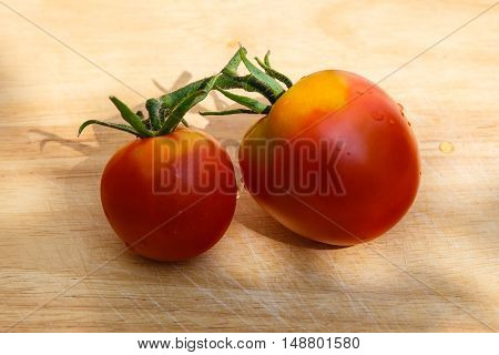 couple of fresh mature tomatoes gathered in a kitchen garden