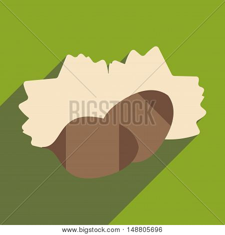 Flat with shadow icon and mobile application pine nuts