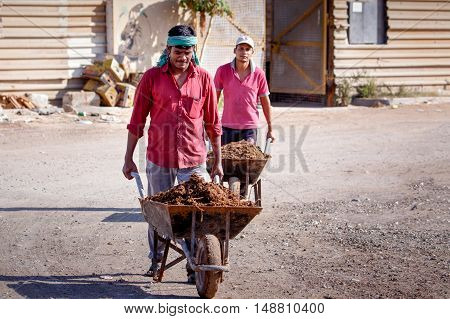 HAMAD TOWN, BAHRAIN - SEPTEMBER 23, 2016: Farmers taking animal manure in wheelbarrows to the cultivation field.