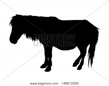 Pony Silhouette on White Background. Isolated vector illustration animal theme.