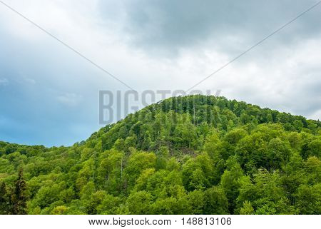 Green mountain on a background cloudy sky. Green hill. Mountain forest green.