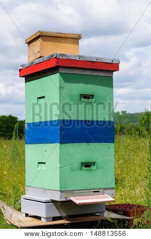 Beehive is on weight control for the number of honey bees brought.