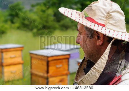 Beekeeper inspects hives in the apiary bees.