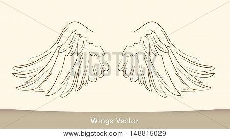Sketch illustration of wings on white background.vector illustration EPS10