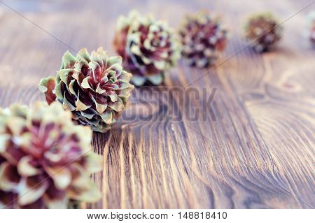 Several spruce cones on the wooden background. Abstract New Year's background.