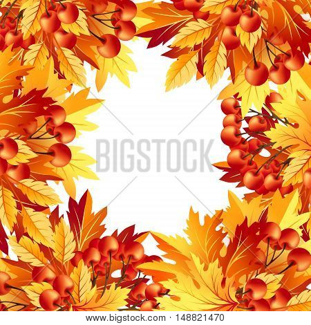 Autumn background with fall maple tree leaves and rowanberry. Vector banners with season foliage decorations and copy space