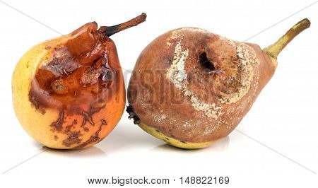 two rotten pears isolated on a white background closeup.