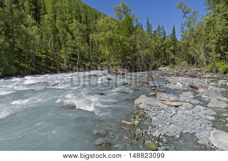 The Kucherla river. Sunny summer day. Altai Mountains Russia.