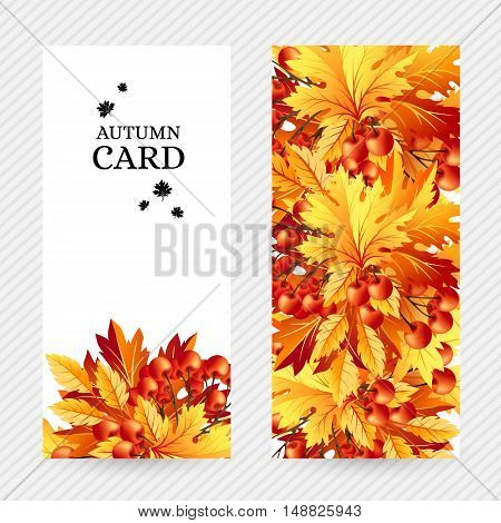 Autumn background with fall maple tree leaves and rowanberry. Vertical vector invitation banners with season foliage decorations and copy space