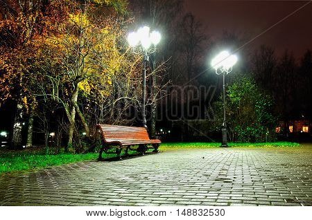Autumn rainy night with lonely bench under yellowed autumn trees in the park. Night city view of autumn city deserted park.