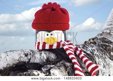 horizontal image of a replica head of a penguin wearing a red toque and a red and white striped scarf sitting on a log under a bright blue sky.