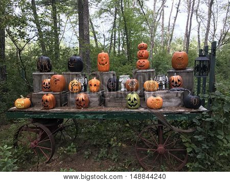 Halloween jack-o-lanterns on display with different faces.