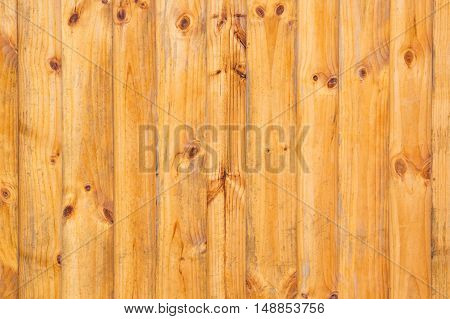 Old wood texture with natural patterns background.