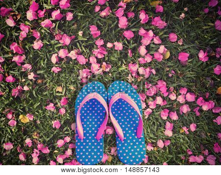 Blue flip flop with pink heart pattern isolated on pink bougainvillea flower dropped and green grass background.Vintage filter effect