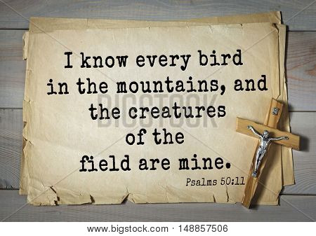 TOP-1000.  Bible verses from Psalms.I know every bird in the mountains, and the creatures of the field are mine.