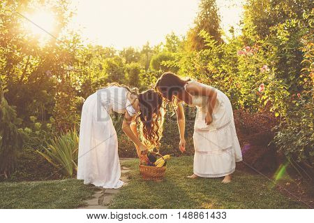 Two cute sisters in long white dresses harvest in a basket. Ripe fruits and vegetables. A bountiful harvest. Agriculture. The setting sun. Soft focus