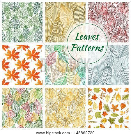 Stylish foliage seamless decorative patterns. Stylized graphic pattern of thin line leaves ornate elements for decoration backgrounds