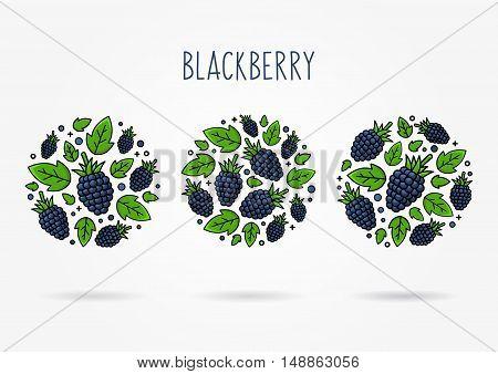 Blackberry line art vector illustration. Blackberry round labels creative concept. Graphic design for poster banner placard.