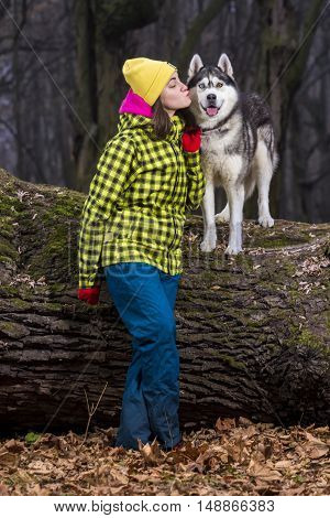 Beautiful girl in the woods with a dog Husky breed. Autumn
