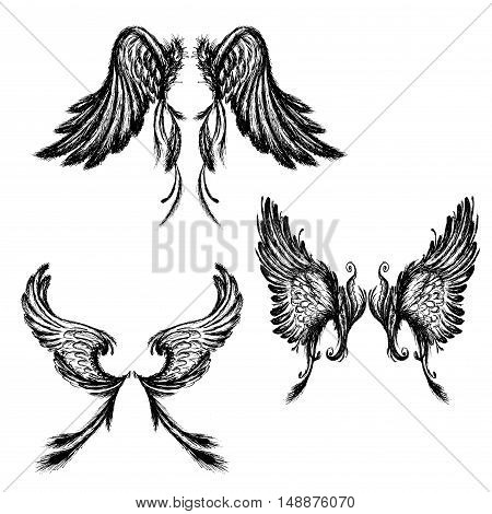 Set of Wings isolated on white backgroundhand drawing vector illustration.