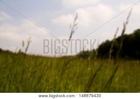 View Over The Chilterns Landscape In Buckinghamshire, England Out Of Focus.
