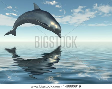 Jumping dolphin on a background of the blue sky.