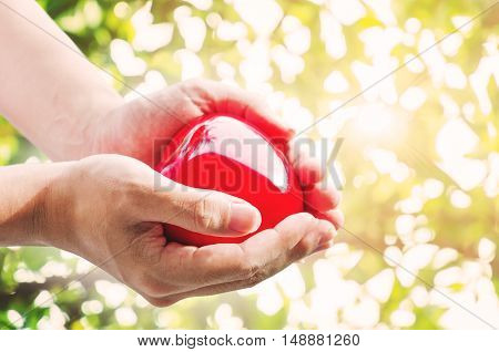 Hand holding red hart with defocus Bokeh with bright sunlight