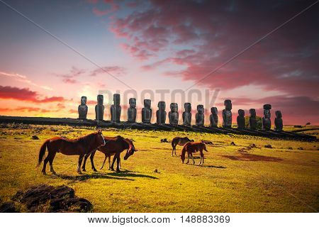 Horse On Easter Island