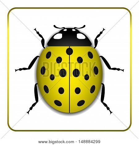 Ladybug small icon. Yellow lady bug sign isolated on white background. 3d volume design. Cute colorful ladybird. Insect cartoon beetle. Symbol of nature spring or summer. Vector illustration