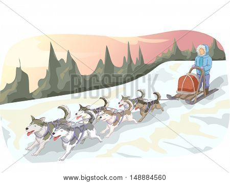 Animal Illustration Featuring a Man Leading a Pack of Sled Dogs Down a Snowy Mountain