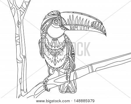 Toucan bird coloring book vector illustration. Zentangle style. Black and white lines. Lace pattern