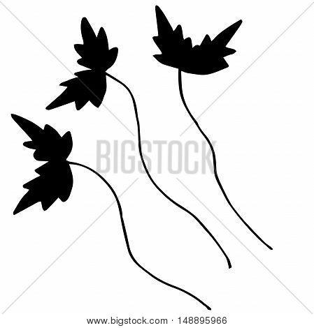Original set of branches for ornament or design