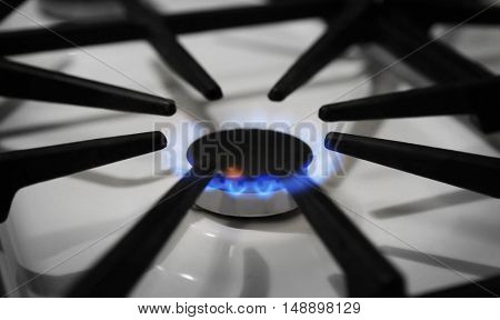 Gas burner with blue flame on domestic stove