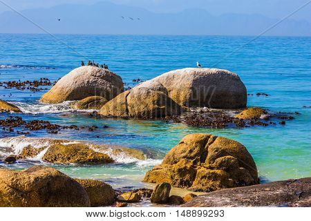 The concept of ecotourism. Large boulders on the beach of the Atlantic Ocean. Boulders Penguin Colony in the Table Mountain National Park, South Africa