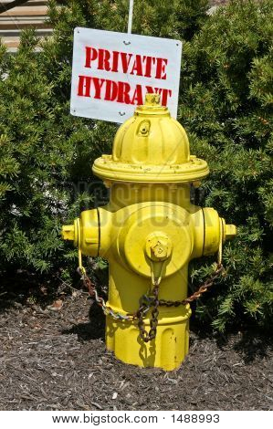 Yellow Fire Hydrant With Sign