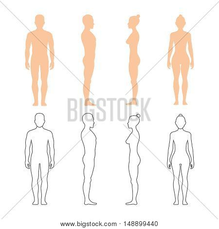 Male and female human vector silhouettes. Man and woman bodies illustration