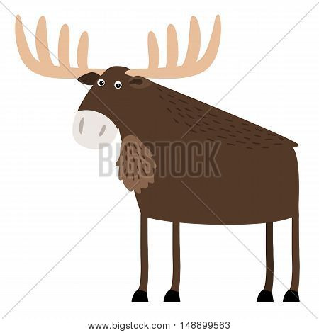Wise old elk with branched antlers standing
