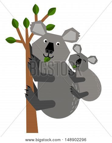 Mother Koala holding her baby on her back, and climbs a tree